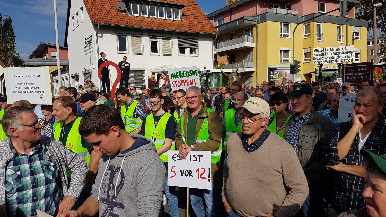 Großkundgebung in Bonn: Bauern hoffen auf Verhandlungsbereitschaft der Bundesregierung