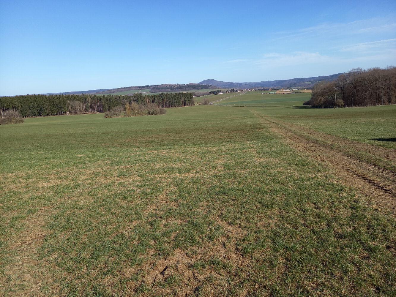 Vollzug des Grundstückverkehrsgesetzes