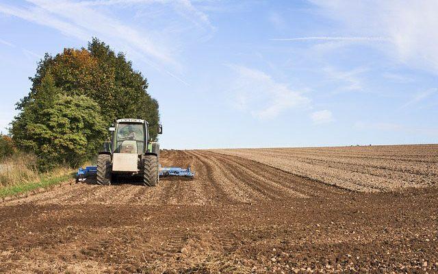 Bekanntmachung: Vollzug des Grundstückverkehrsgesetzes