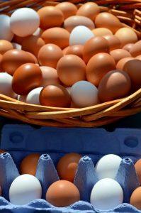 egg-2580929_1920